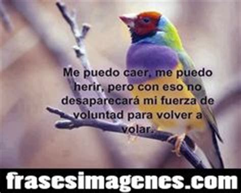 positivas con imagenes para facebook frases nuevas facebook car tuning 1000 images about frases e imagenes on pinterest frases