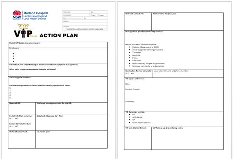 disability action plan template image collections