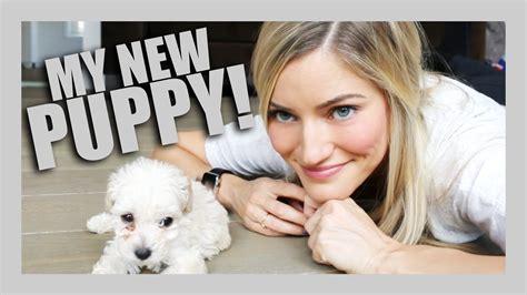 i got a puppy i got a puppy ijustine funnydog tv