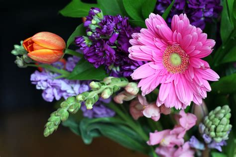 Proflowers Gift Card - this week for dinner free giveaway proflowers 100 gift cards this week for dinner