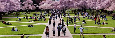 Washington 5 Year Mba by The 5 Most Important Things About An Mba You Ll Need To