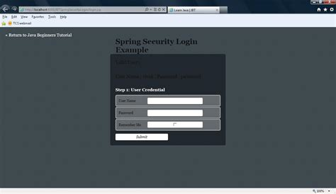 spring security custom login page exle