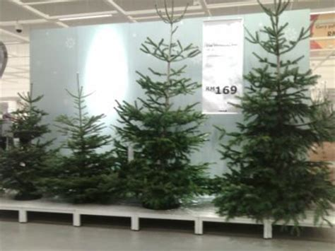 ikea actually sells real christmas trees update stop