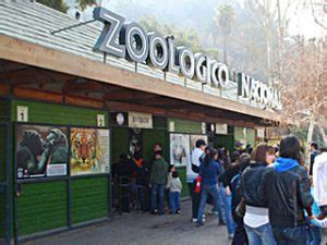 entrada zoológico barranquilla cerro san crist 243 bal santiagodochile