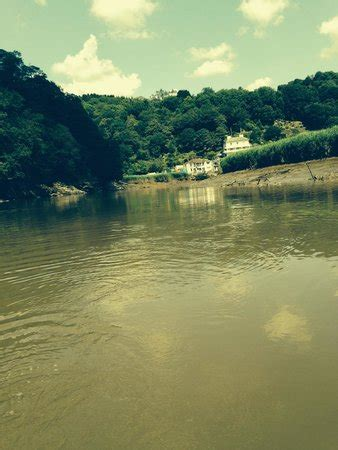 tamar canoe and boat hire tamar boat canoe hire calstock 2018 all you need to
