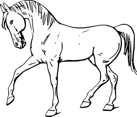 cutting horse coloring page caballos para colorear para ni 241 os y mayores