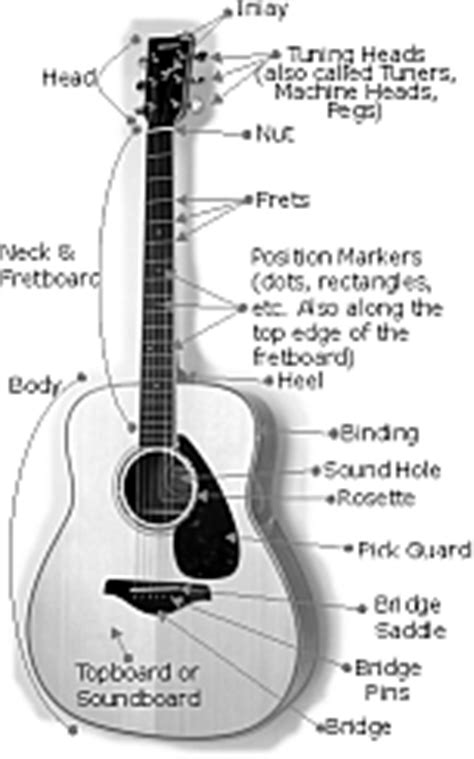 guitar tutorial video for beginners in hindi the anatomy and parts of a guitar hear and play music