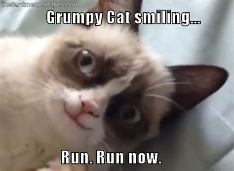 Frowning Cat Meme - 1000 images about grumpy cat on pinterest