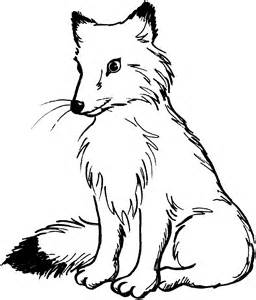 what color is a fox free printable fox coloring pages for