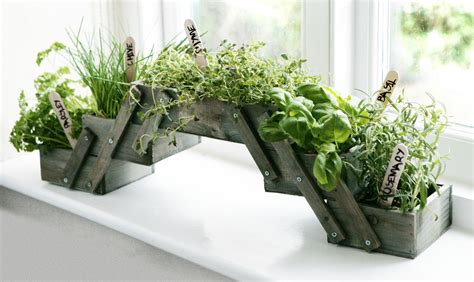 Herb Planter Kit by Shabby Chic Folding Wooden Herb Planter Kit Seeds Kitchen