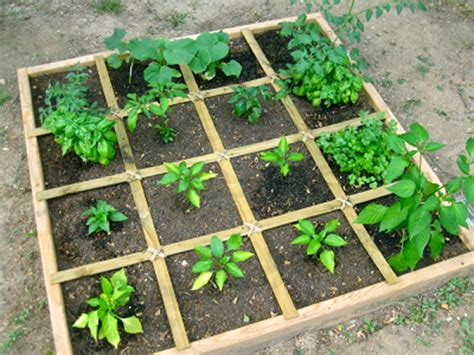 Squar Garden by Hydroponic Vs Soil Gardening Archives Atlantis