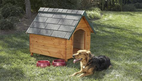 temperature controlled dog house 11 free dog house plans puppy leaks