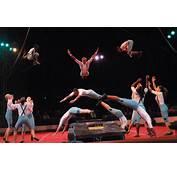 1000  Images About Tatatararara Circus On Pinterest