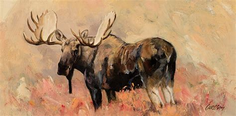 Bull Moose Also Search For Jackson Auction Bull Moose