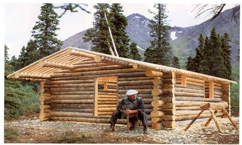 diy log cabin building a simple log cabin small log cabin building log