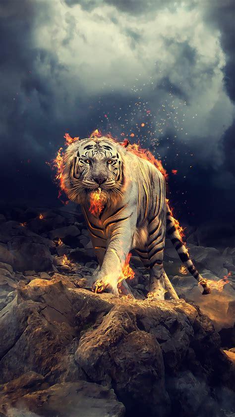 wallpaper white tiger fire cgi hd creative graphics