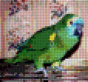 cross stitch pattern using photoshop pin by banu abdusselamoglu on cross stitches pinterest