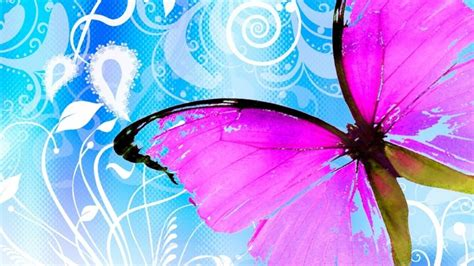 imagenes wallpapers mariposas fondos para whatsapp patada de caballo mariposas
