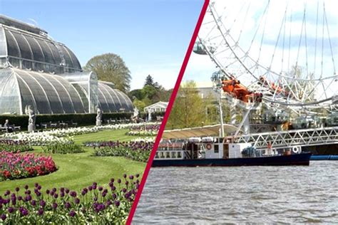 thames river cruise kew gardens kew gardens visit and river cruise from central london for