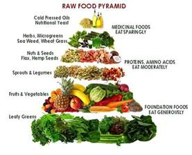 raw food life the science of raw food