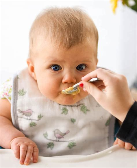 how to introduce to baby food how to introduce peanuts to your baby and why you should do it
