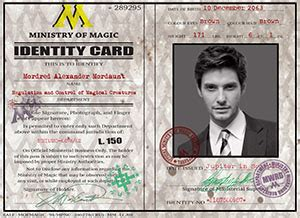 ministry of magic identity card template portfolio the underground studio snitchseeker