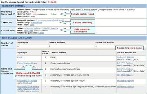 protein names help pir protein information resource