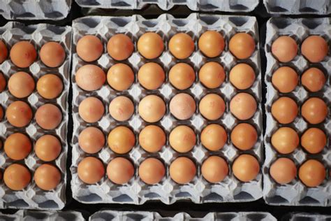 wann sind eier abgelaufen wie viele eier pro woche sind gesund fitbook
