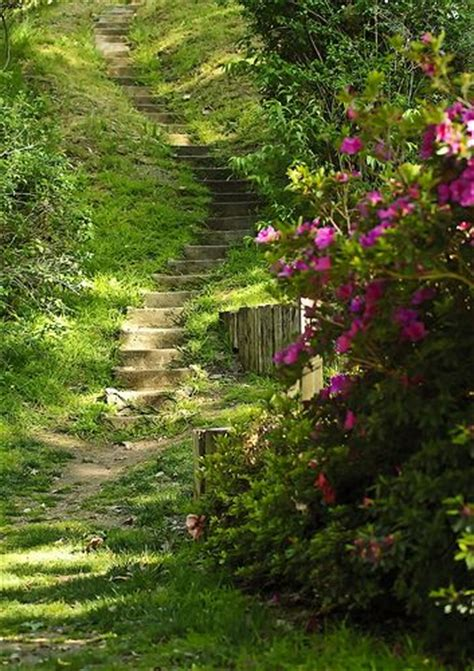 Ucr Botanic Gardens 1000 Images About Uc Riverside On Pinterest