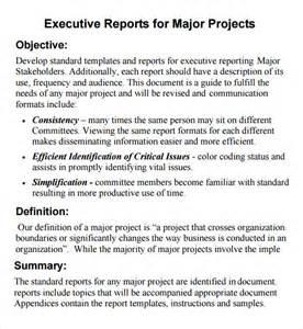 executive report 6 free pdf doc sle