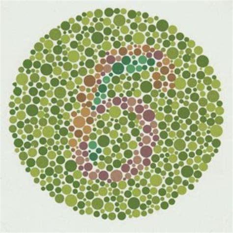 test per il daltonismo come si manifesta il daltonismo focus it