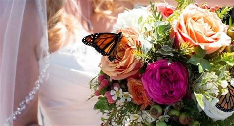 Wedding Planner Orange County by Wedding Planner Orange County Laguna Lindsay