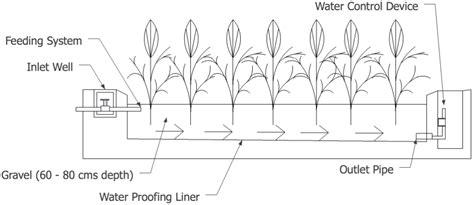design criteria of a constructed wetlands horizontal flow constructed wetlands hfcw sswm
