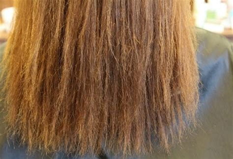 what is the best perm for damaged hair what is the best perm for damaged hair