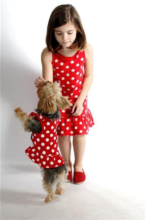 yorkie dresses yorkies images and yorkie modeling their polka dot dresses hd wallpaper
