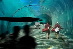 Undersea Walkway at $500 Million Golf Course in Maldives   AquaNerd