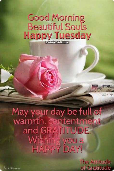 imagenes de good morning tuesday good morning beautiful souls happy tuesday pictures