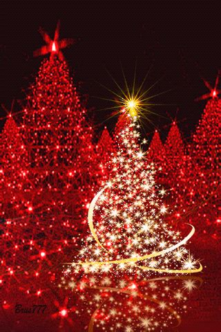 twinkling  twirling red christmas trees pictures   images  facebook tumblr