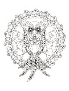 free owl coloring pages for adults 23 free printable insect animal coloring pages