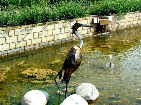 botanic garden durham botanic gardens durham co curate