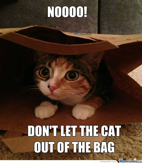 Cat Out Of by Letting The Cat Out Of The Bag By Recyclebin Meme Center