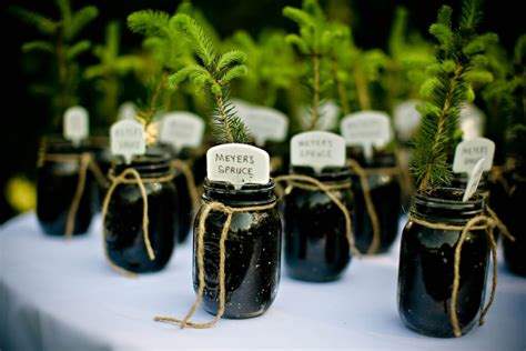 Tree Seedling Wedding Favors by Wedwed Eco Freindly Wedding Favors