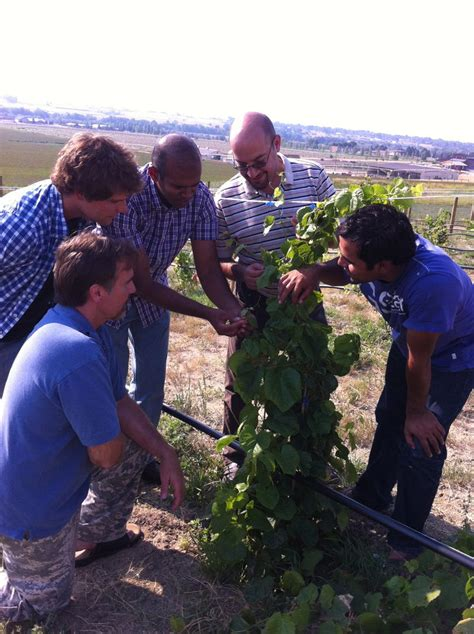 dan tyree academics missouri state university wyoming wine project creates new opportunities for