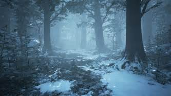 winter images image gallery winter forest