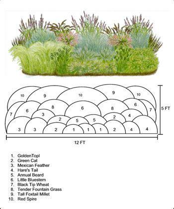 ornamental grass garden design pictures intersiec com