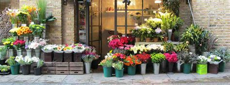 Same Day Flowers by Same Day Flower Delivery Available Throughout The Uk