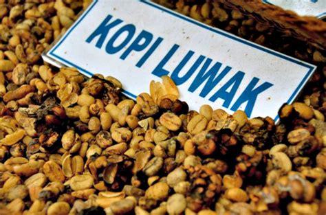 Daftar Coffee Bean Indonesia kopi luwak coffee in indonesia matador