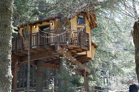 casa su albero noleggio casa sull albero