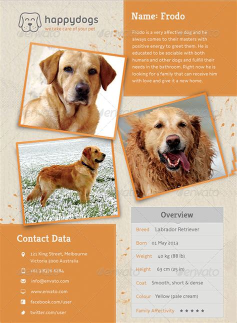pet flyer templates free 8 psd lost flyer templates free premium templates