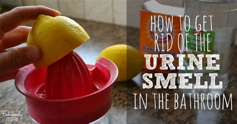 get urine smell out of bathroom how to get rid of the bathroom urine smell